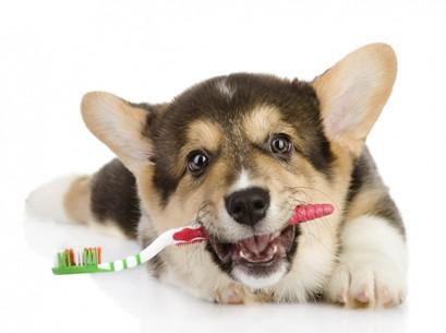 Чистка зубов ултразвуком