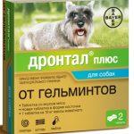 Дронтал для собак — показания и противопоказания, стоимость и описание