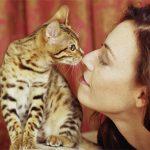 Чем можно заразиться от домашней кошки?