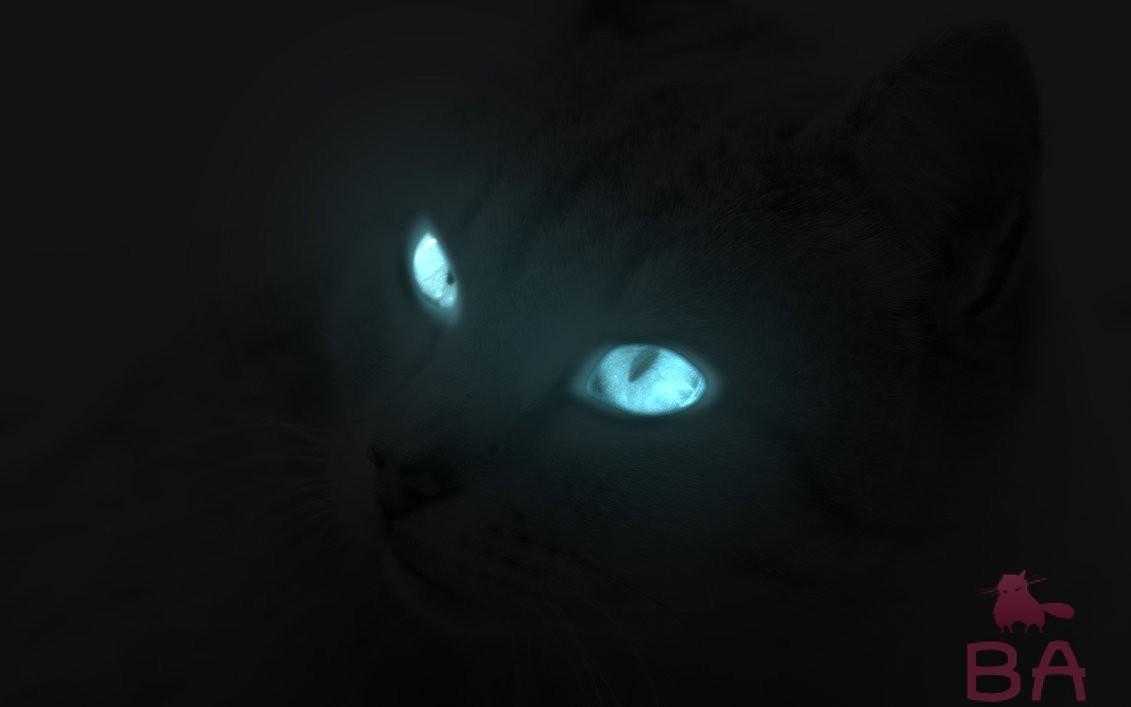 Светящиеся глаза у кошки