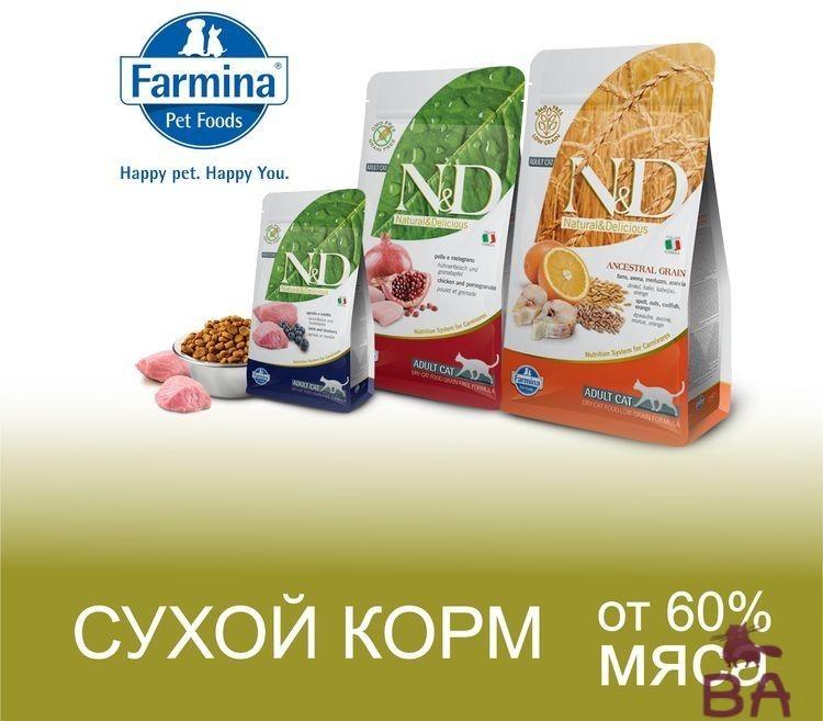 Korm-Farmina