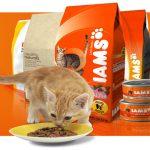 Корм Iams для кошек: состав, виды, отзывы и цена