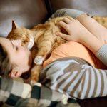 Каким образом кошки способны лечить людей?