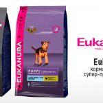 Корм Eukanuba для собак: анализ состава, разновидности, цена, где купить?