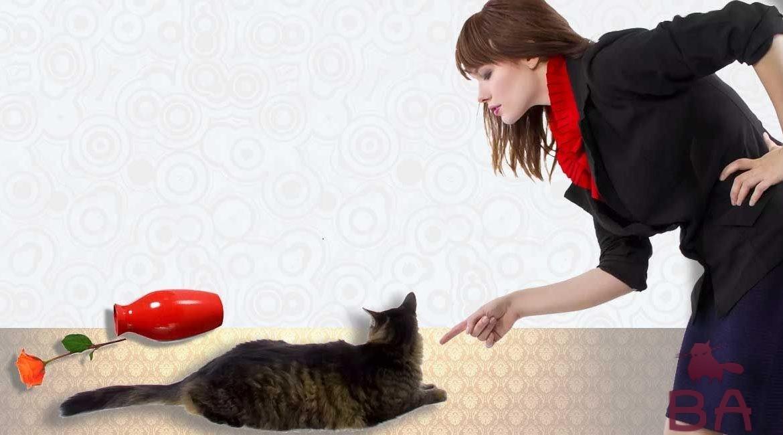 Жещина и кошка