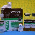 Средство Котэрвин для кошек — описание, стоимость, отзывы