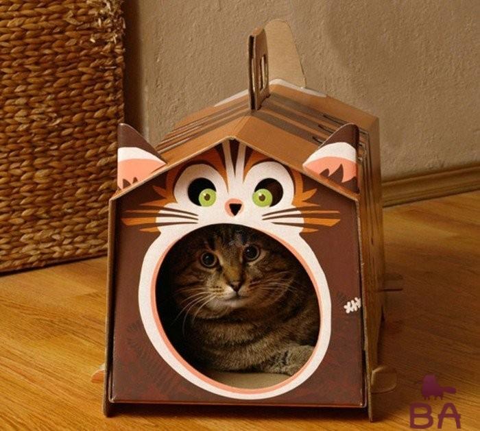 кошка спряталась от страха